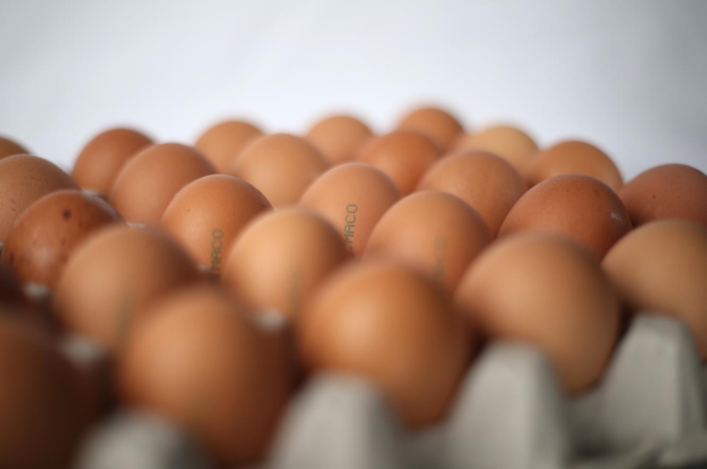 Wir bringen Farbe auf's Ei!